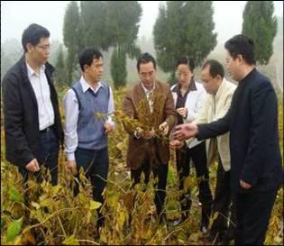 时任四川省农业厅副厅长牟锦毅考察指导我院大豆新品种南豆12新品种示范