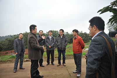 农业部科技发展中心主任杨雄年调研我院科技创新工作